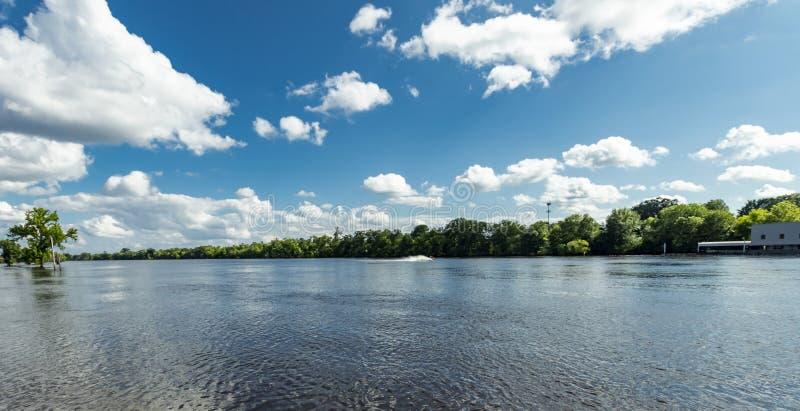 Vattengyckel på floden royaltyfri foto
