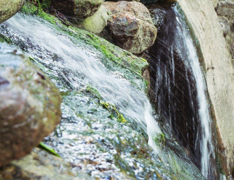 Vattenkaskad i en parkera arkivfoto
