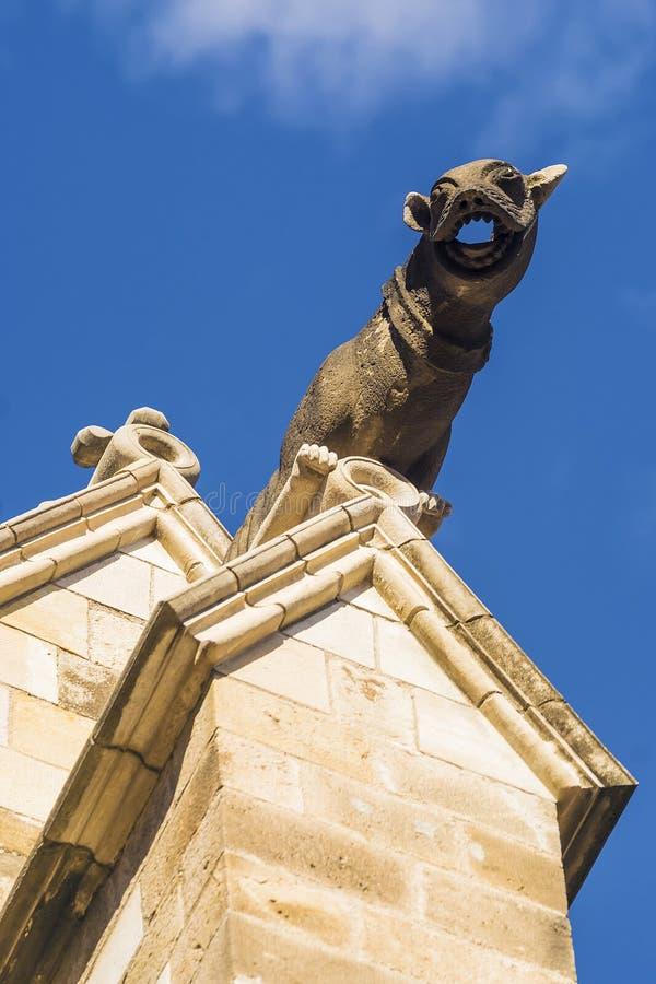 Vattenkastare på domkyrkan av Barcelona arkivfoton