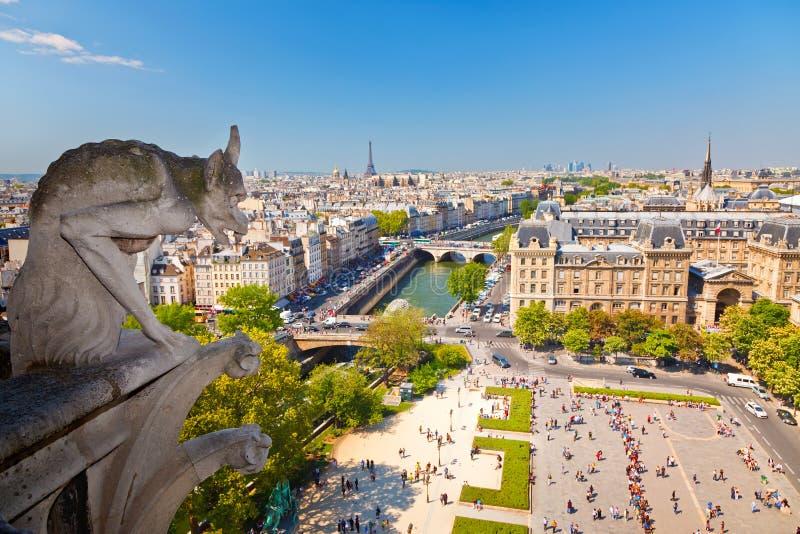 Vattenkastare På Notre Dame Cathedral Royaltyfri Bild