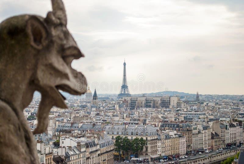 Vattenkastare på Notre Dame arkivfoton