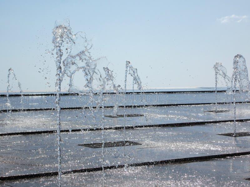 Vattenlekar royaltyfria bilder