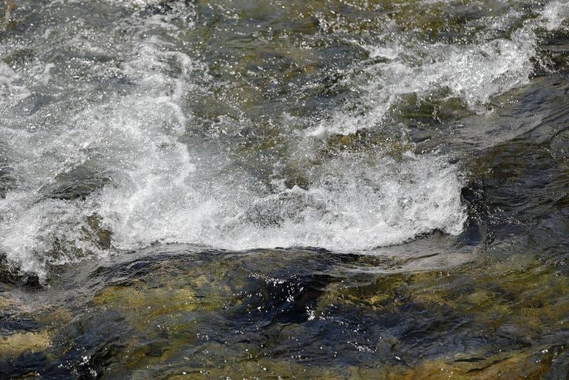 Vattenlekar royaltyfri foto
