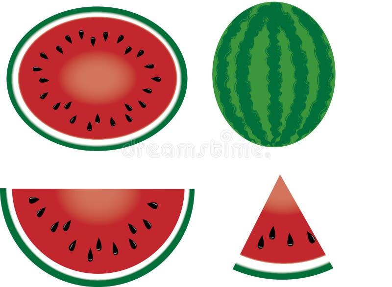 vattenmelon vektor illustrationer