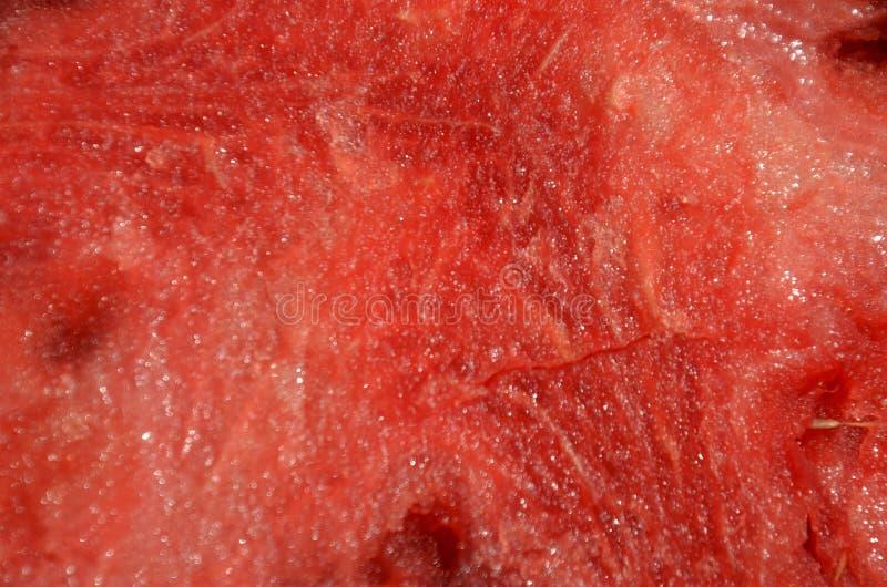 Vattenmelon 7 royaltyfria bilder