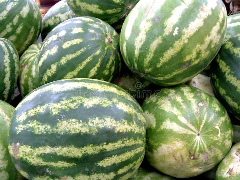 vattenmelon royaltyfri bild