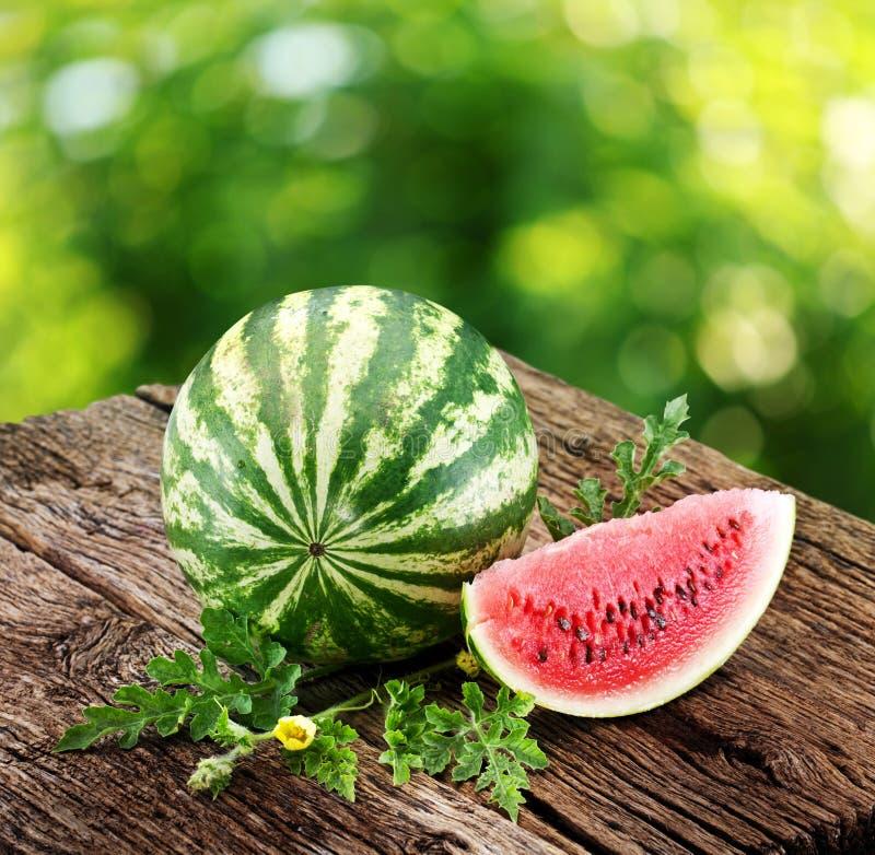 Vattenmelon med en skiva och leaves royaltyfri foto