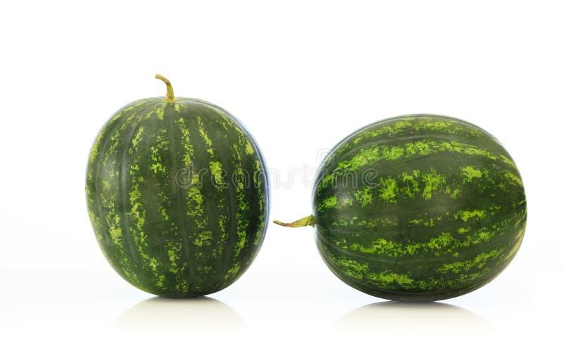 Vattenmelon som isoleras på vit bakgrund royaltyfria bilder