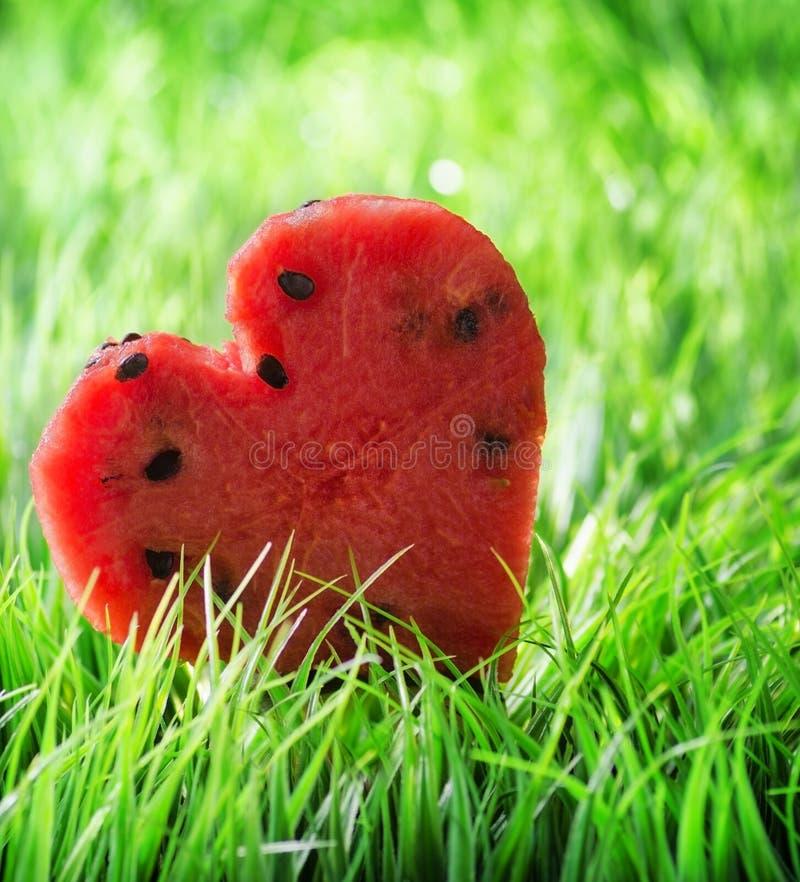 Download Vattenmelonhjärta På Grönt Gräs Arkivfoto - Bild av naturligt, miljö: 37347940