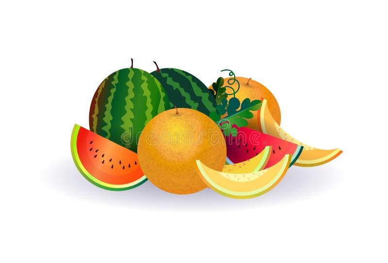 Vattenmelonmelonfrukt på vit bakgrund, sund livsstil eller bantar begreppet, logoen för nya frukter vektor illustrationer