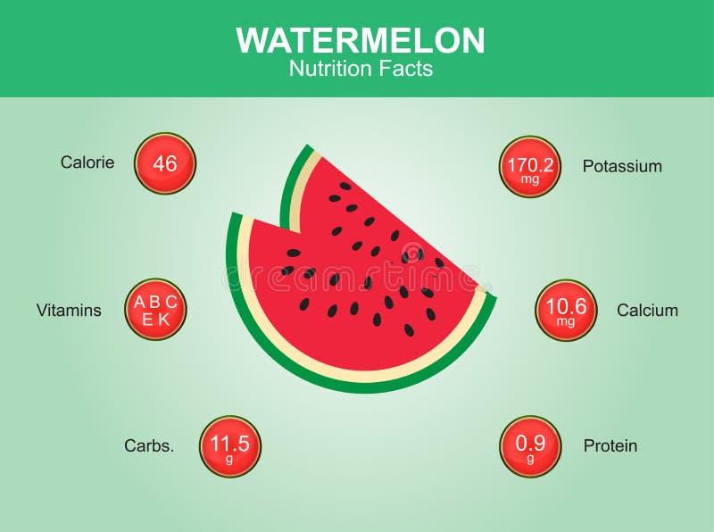 Vattenmelonnäringfakta, vattenmelonfrukt med information, vattenmelonvektor vektor illustrationer