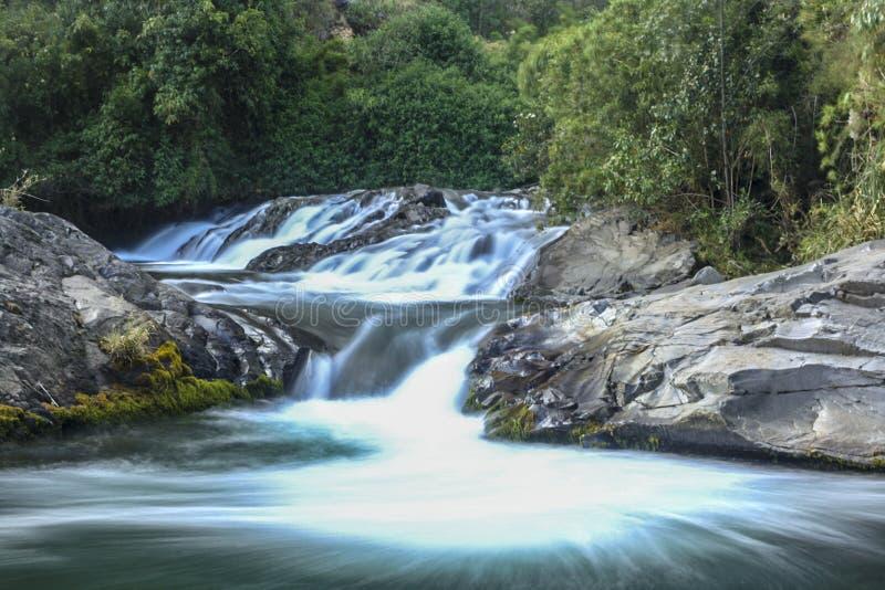 Vattennedgången vaggar igenom med en grön bakgrund arkivfoton