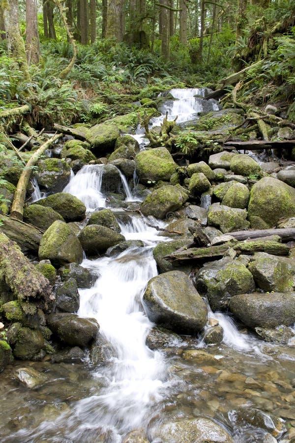 Vattennedgångvattenfall royaltyfria foton