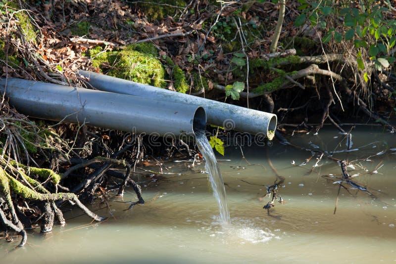 VattenOutflow i skogsmark royaltyfria bilder