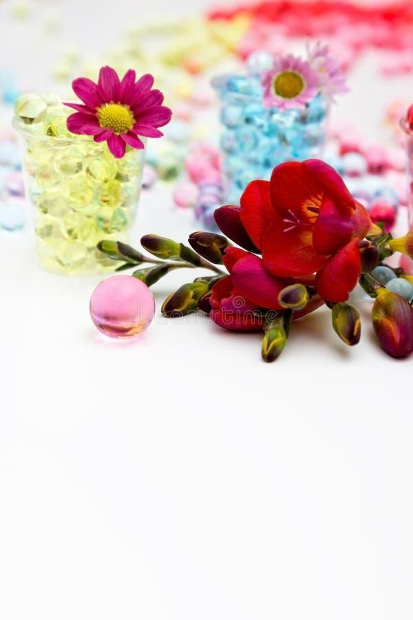 Vattenpärlor och blommor arkivfoton