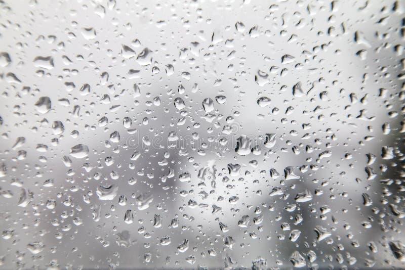 Vattensmå droppar på en Gray White Background royaltyfria bilder