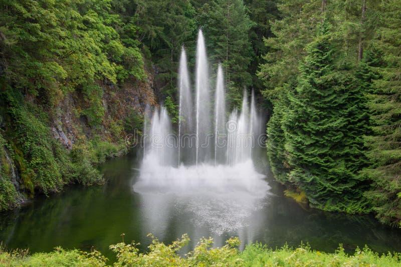 Vattenspringbrunn i den sjunkna trädgården, Butchart trädgårdar, Victoria, Kanada royaltyfria bilder