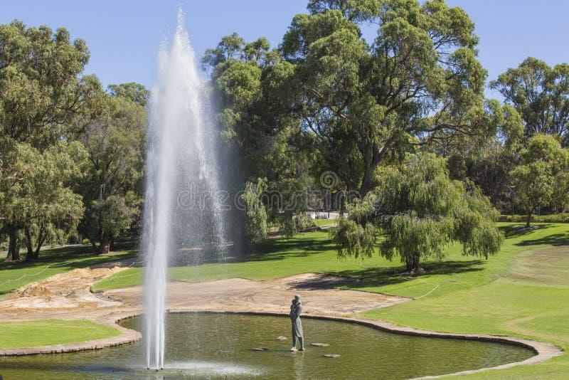 Vattenspringbrunnen i dammet på konungar parkerar Perth västra Australien fotografering för bildbyråer