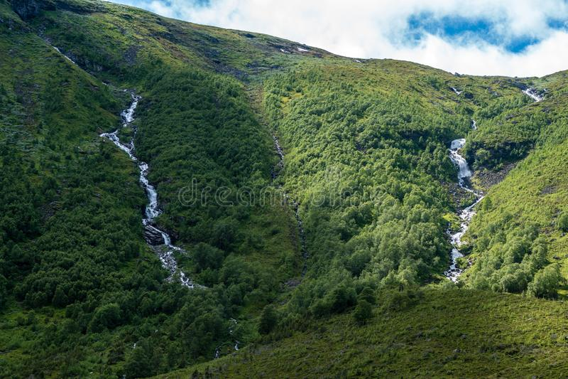 Vattenströmmar som flödar ner en grön bergssida fotografering för bildbyråer