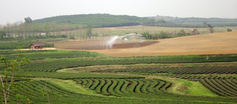 Vattensystem för jordbruks- royaltyfria foton