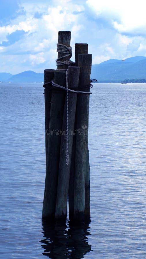 vattenträ royaltyfria foton