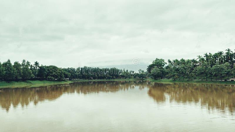 Vattenträd och himmel arkivfoton