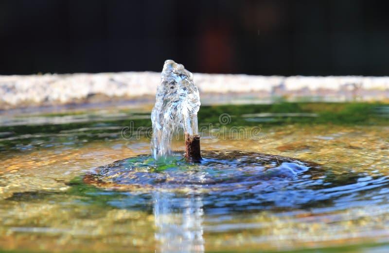Vattenvår royaltyfri fotografi