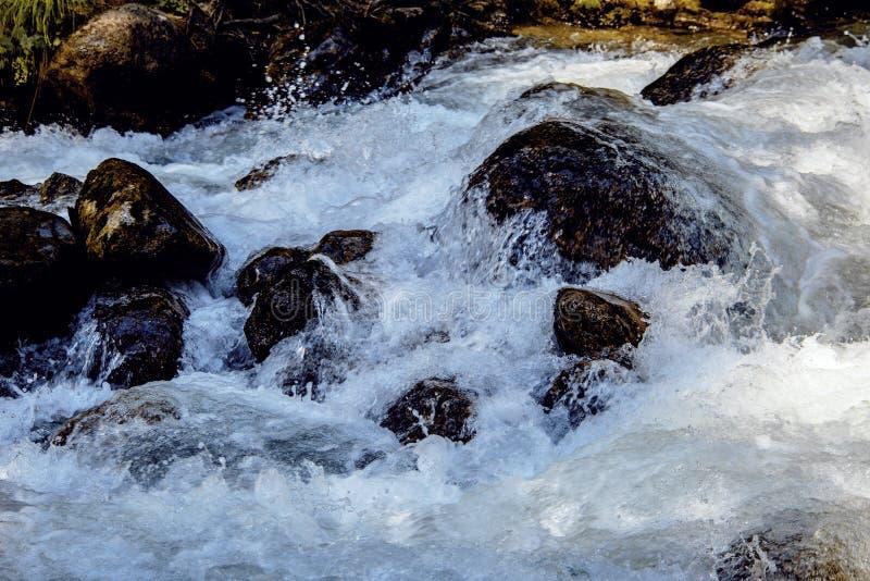 Vattnet av den stormiga bergfloden som flödar bland stenar och stenblock royaltyfri fotografi