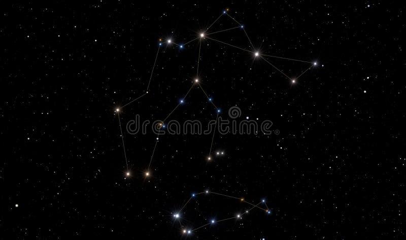 Vattumannenkonstellation och sydlig fisk royaltyfri fotografi