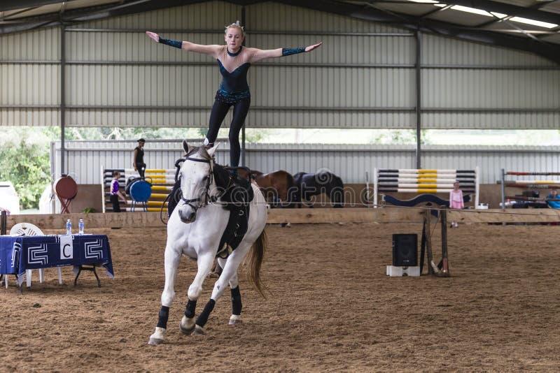 Vaulting van het paard RuiterVrouw royalty-vrije stock afbeelding
