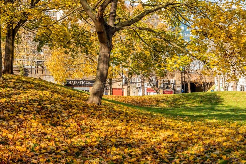 Vauxhall, London, UK; 17th November 2017; Autumn Scene royalty free stock image