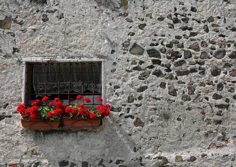 Vazen Op Balkon : Vazen van geraniums met rode bloemen op een balkon stock foto