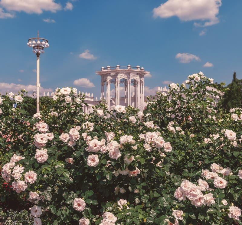 VDNH i blommor i sommaren Kulturpaviljong arkivbilder