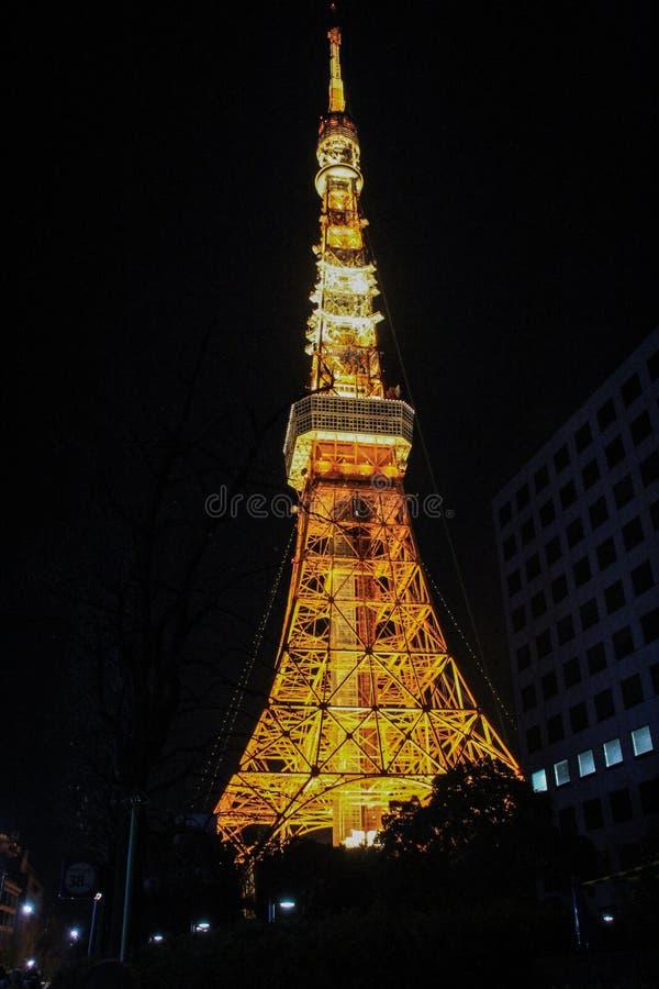 Vea abajo de la torre de Tokio con la iluminación en fondo oscuro del cielo imagenes de archivo