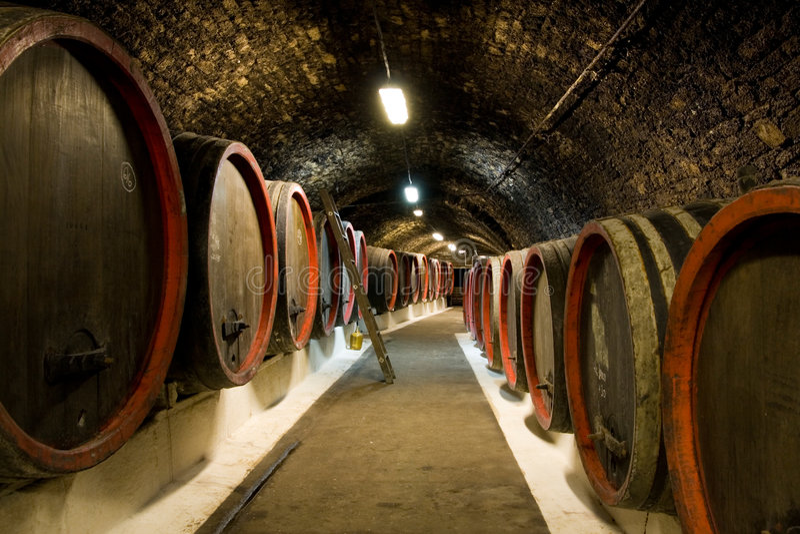 Vecchi barilotti di vino immagini stock libere da diritti