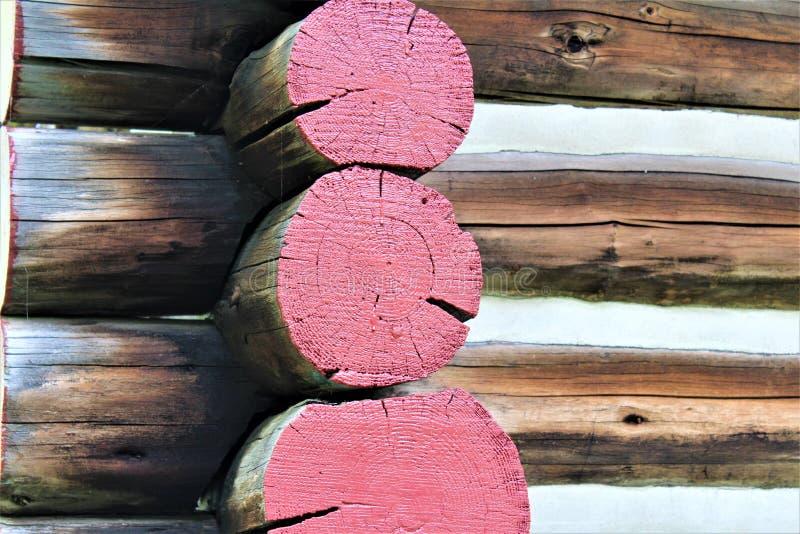 Vecchi ceppi rustici della cabina di ceppo situati in Childwold, New York, Stati Uniti fotografia stock libera da diritti
