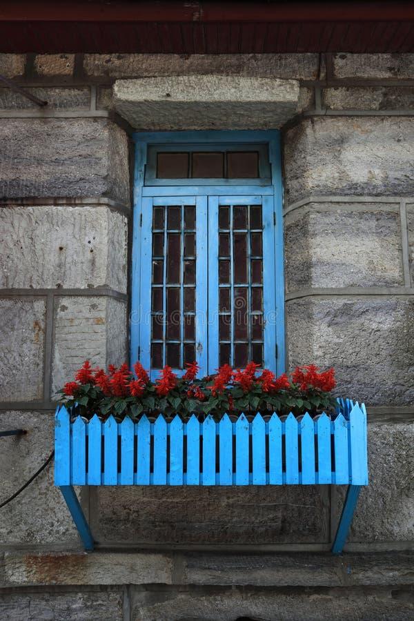 Vecchi finestra e fiori immagini stock