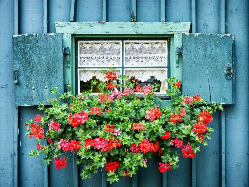 Vecchi finestra e fiori fotografie stock libere da diritti
