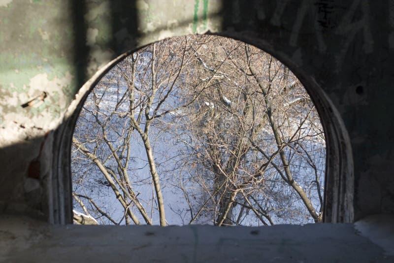 Vecchi finestra ed alberi fotografia stock