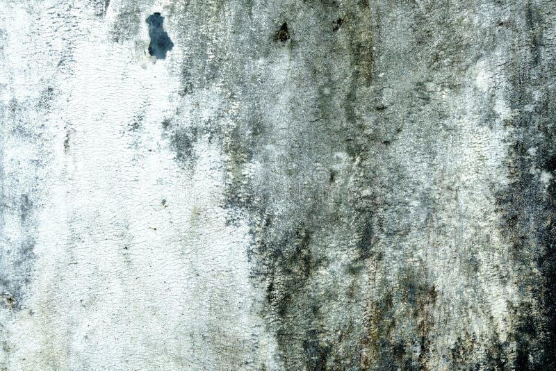 Vecchi fondo del muro di cemento di lerciume, adatti a presentazione, a tempio di web ed a fabbricazione dell'album per ritagli immagine stock