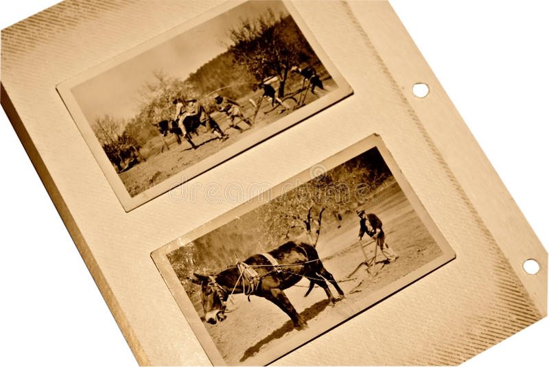 Vecchi pagina dell'album/mulo degli uomini fotografie stock