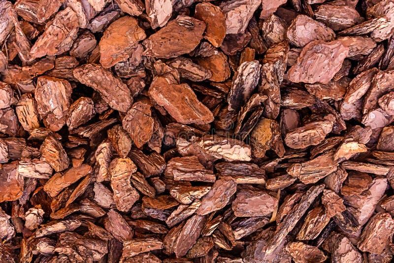 Vecchi pezzi del pino della corteccia di Brown di base naturale di legno del fondo dei materiali di eco della decorazione rustica fotografie stock
