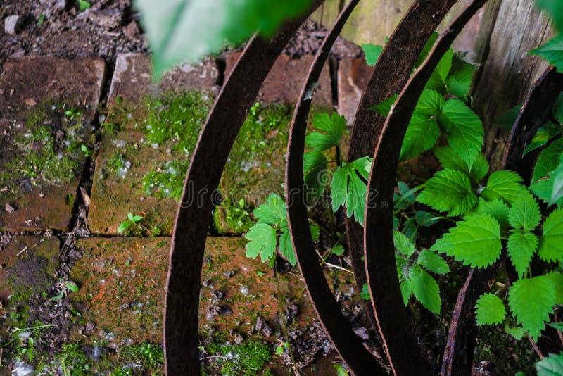 Vecchi piatti arrugginiti del ferro torti a spirale nei cerchi contro lo sfondo dei mattoni consumati coperti di muschio e di pia fotografie stock