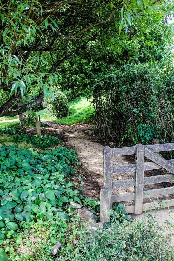 Vecchi portone e percorso dell'azienda agricola in Nuova Zelanda fotografie stock