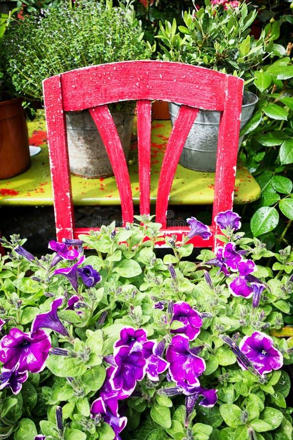 Vecchi sedia e fiori immagini stock