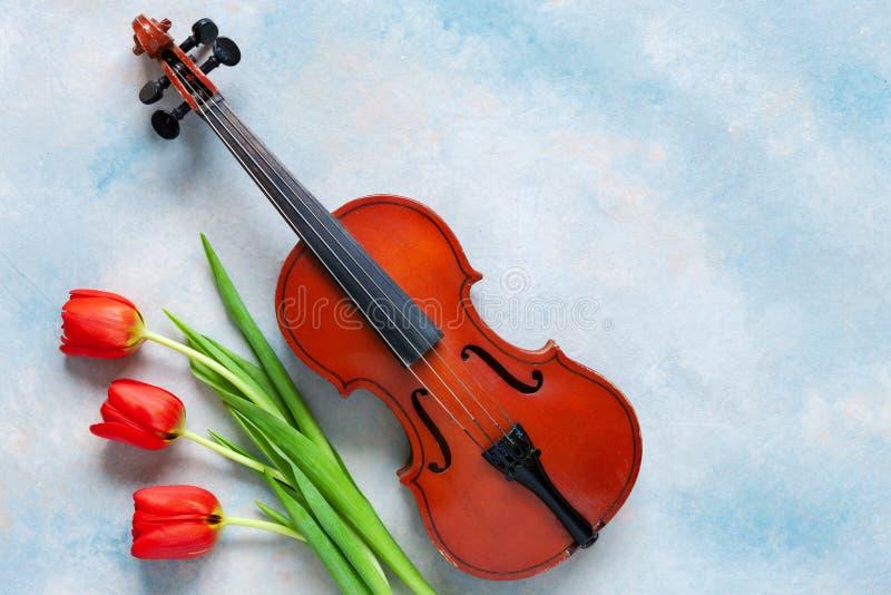 Vecchi violino e mazzo dei tulipani rossi Giorno di S. Valentino, l'8 marzo concetto Vista superiore, primo piano sul fondo concr fotografia stock libera da diritti