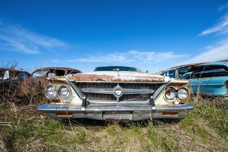 Vecchia automobile d'annata di Chrysler 300, iarda di ciarpame immagine stock