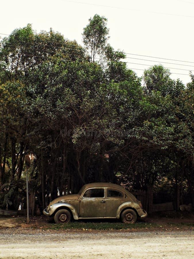 Vecchia automobile sotto gli alberi immagine stock
