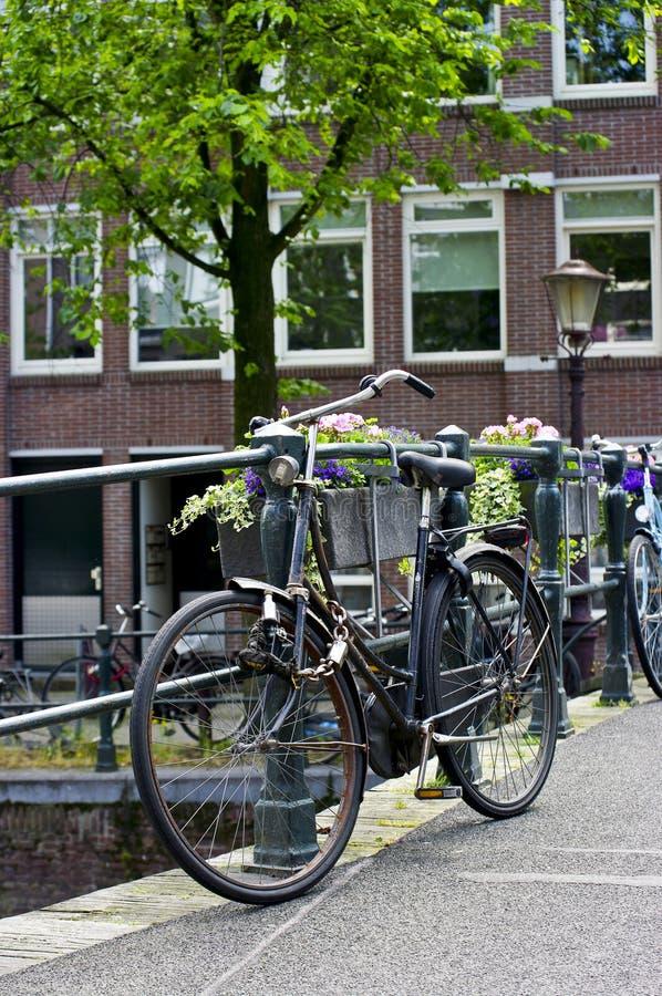 Vecchia bicicletta immagine stock