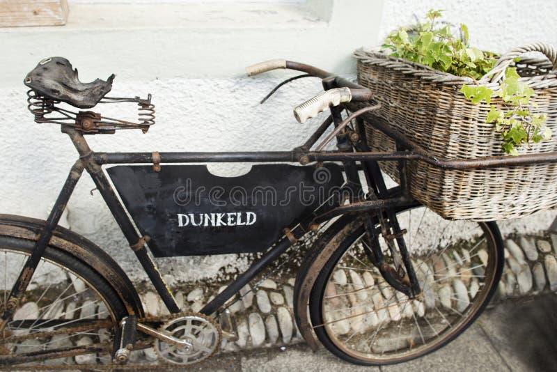 Vecchia bicicletta d'annata utilizzata per una decorazione del giardino in Dunkeld fotografia stock libera da diritti